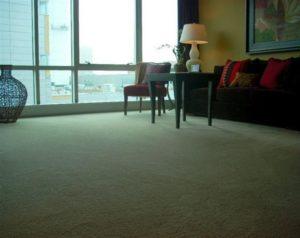 Carpeting or Hardwood in Apartments